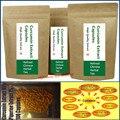 A curcumina Extrato 95% + Extrato Piperina Extrato 1% 100 Cápsulas-Alta Qualidade