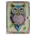 Color Owl Pattern PU Leather Full Body Case with Stand for iPad Air 2