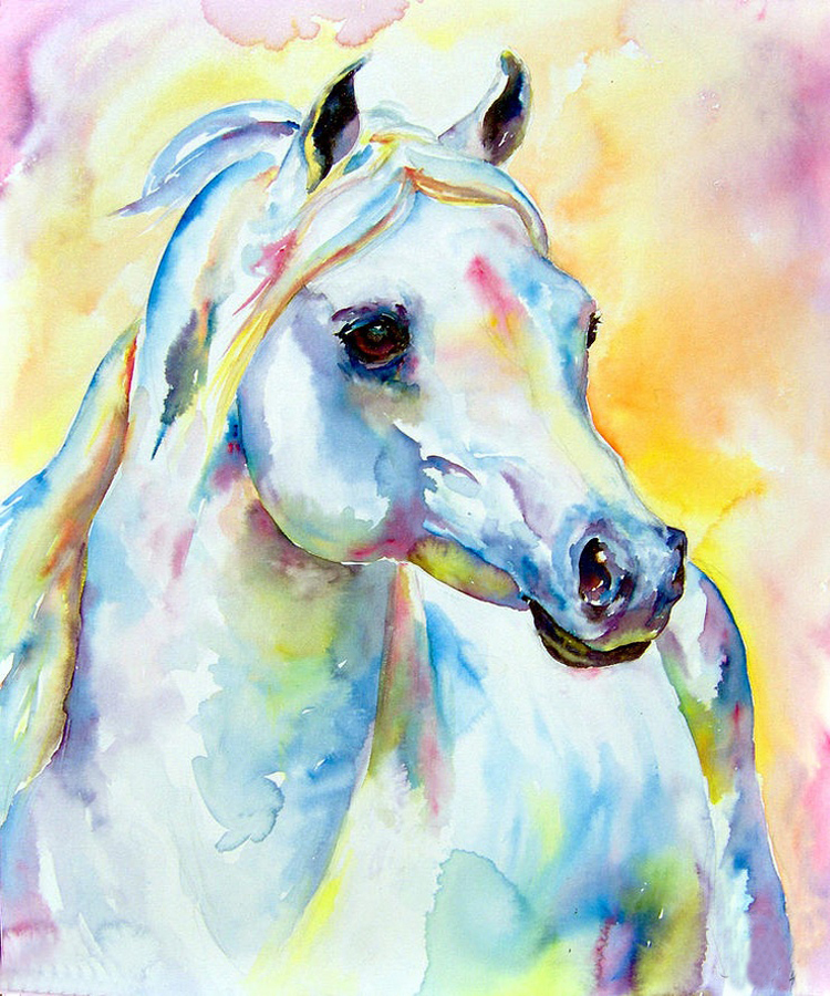 Dream colors shy horse oil painting on canvas 100 hand for Hand painted portraits from photos