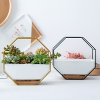 Simple Modern Ceramic Iron Succulent Plant Pot Living Room Office Garden Home Decor Permeable Green Plant Flower Pots LFB623