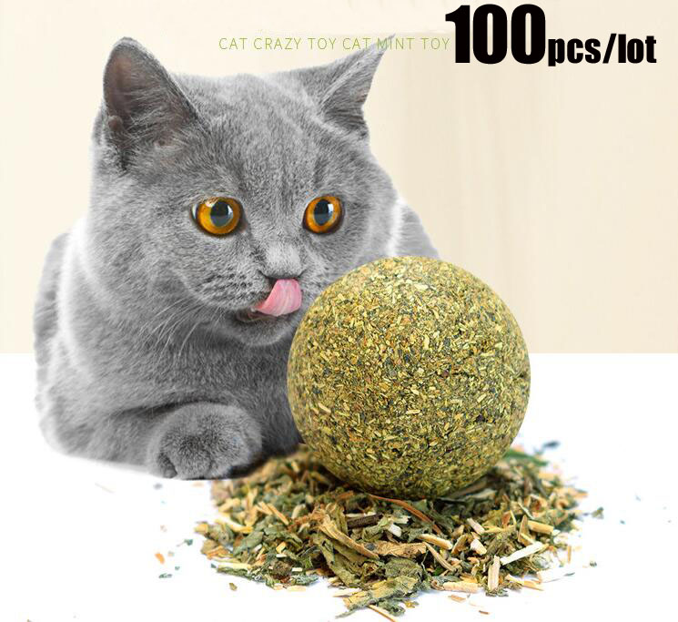100Pcs lot Cat Natural Catnip Toys Menthol Flavor Kitten Treat Ball Cats Playing Cleaning Teeth Toy