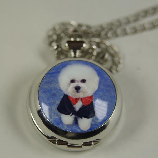 2012 shipping hot sale new men women lady Antique Mini Pocket Watch Necklace silver full dress dog wp368