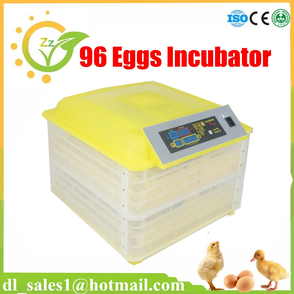 Automatic Chicken Egg Incubator for Household Incubating Parrot 48 Eggs Hatching Machine High Hatching Rate CE Approved high quality holding 60 chicken eggs manual jn2 60 mini egg incubator high hatching rate