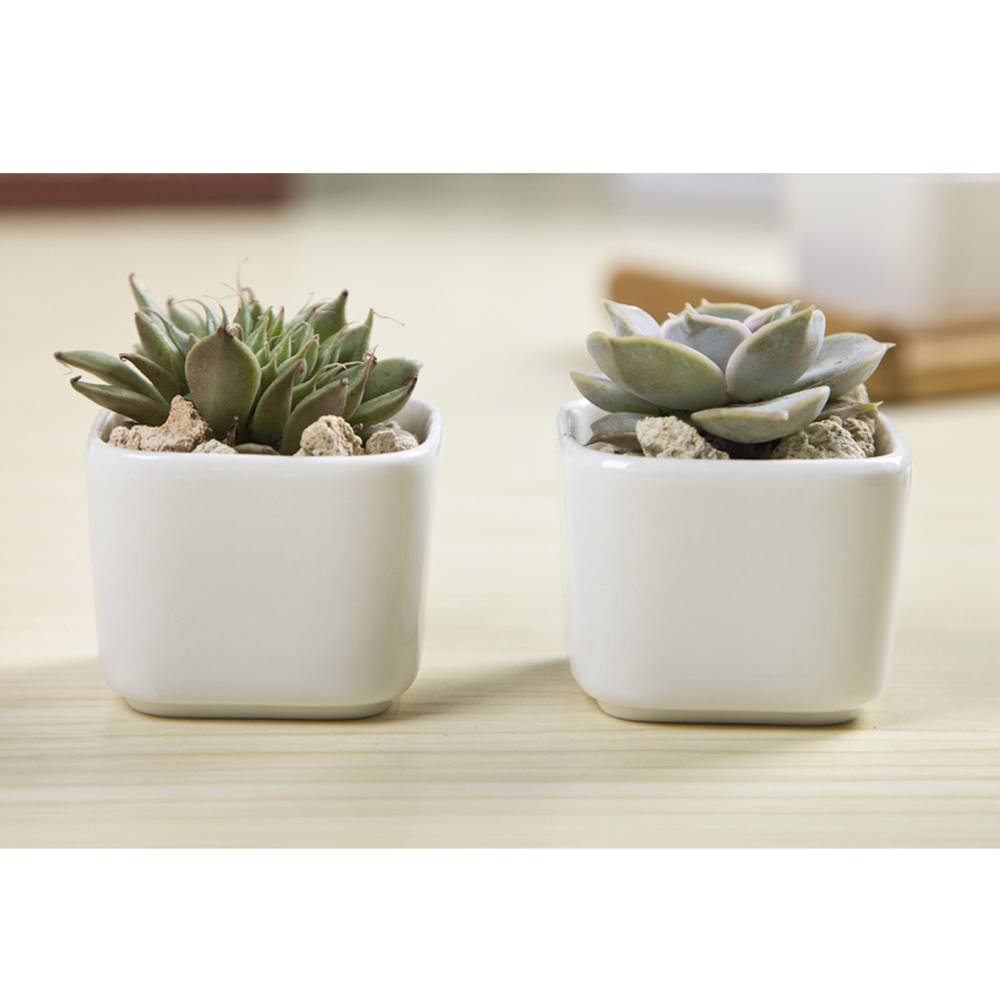 Oloey 1pc Succulent Plants Flower Pot Little Size Simple White Porcelain Pots Nice Trend Garden Flowerpot Planter Gifts In Planters