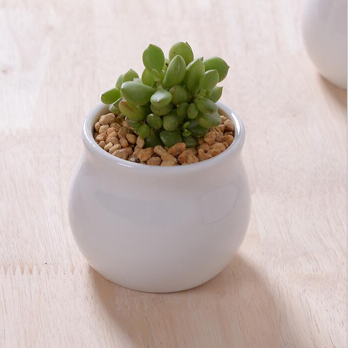 1pc New Design Round Creamic Flower Pots Small White