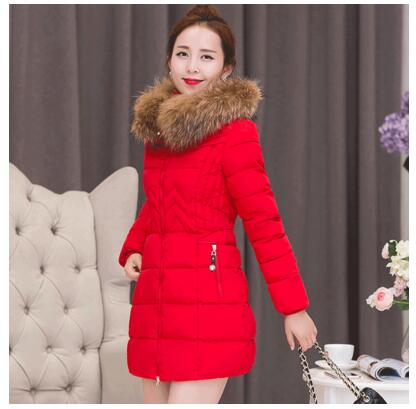 Autumn and winter cotton in the long section of the Korean version of the Slim waist cotton jacket large size thick women down j purnima sareen sundeep kumar and rakesh singh molecular and pathological characterization of slow rusting in wheat