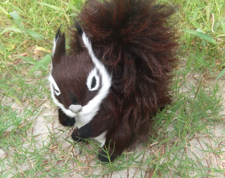 cute simulation Squirrel toy lifelike brown Squirrel dolls gift about 19x19cm