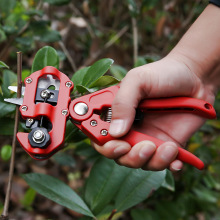 garden Farming Pruning Shears Scissor Fruit Tree Grafting Gardening Tools Vaccination Secateurs Pruning Cutting Shears Hand tool labor saving pulley scissor pruning tool for branches garden fruit tree pro pruning shears scissor grafting cutting tool