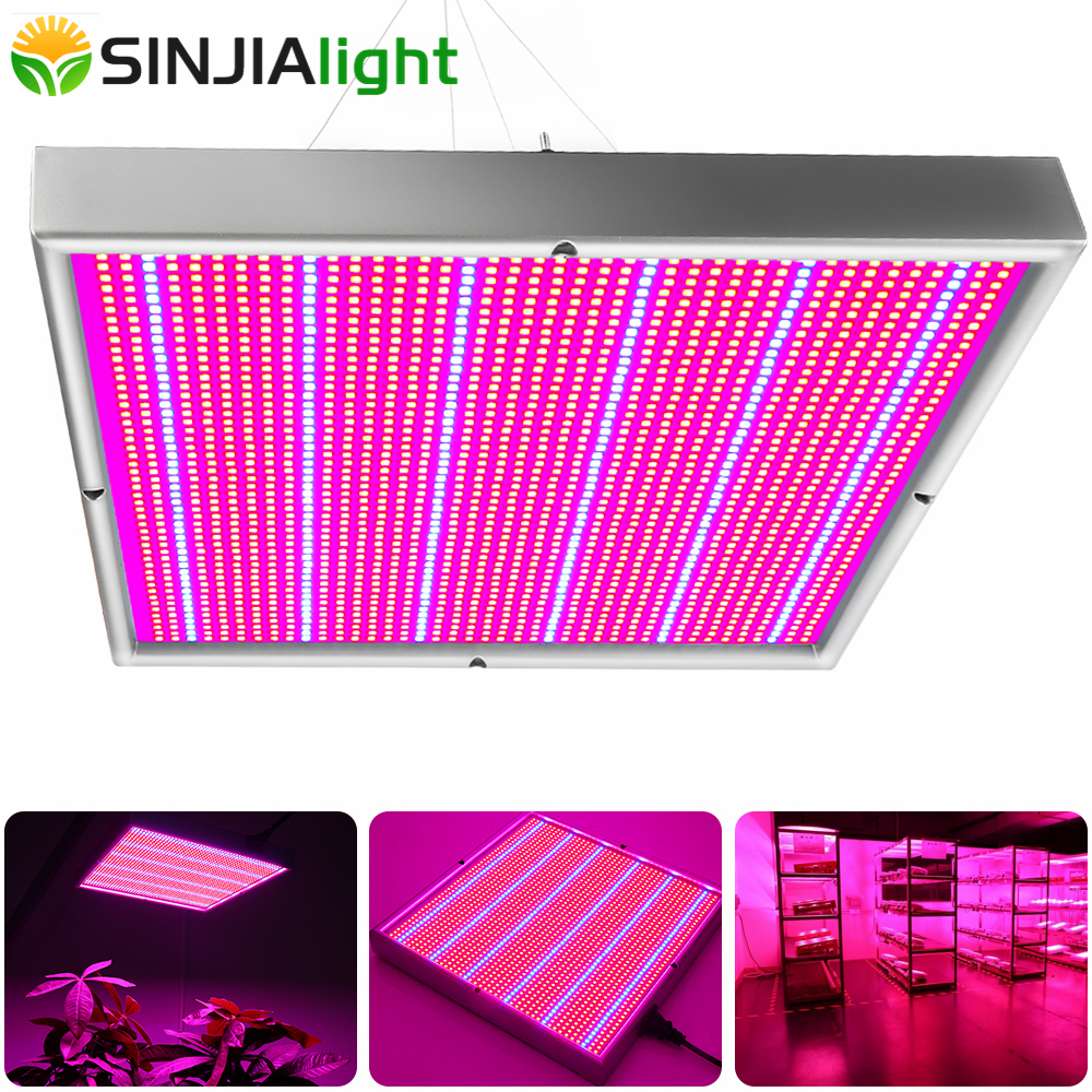 200W LED Grow Light Panel Plant Growing Lamp Rojo + Azul Phytolamp para flores Plantas de interior Hidroponía Vegs grow carpa invernadero