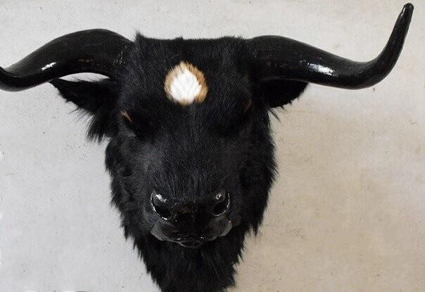 new creative simulation yak head toy lovely handicraft yak head pendant gift about 56*38*50cm водолазки yak more водолазка