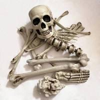 Human Skeletons Haunted Home Props Broken Bone Skull Horror For Halloween Party Room Escape Artificial 19Pcs