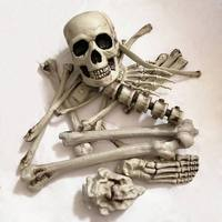 Human Skeletons Haunted Home Props Broken Bone Skull Horror For Halloween Party Room Escape Artificial 19Pcs