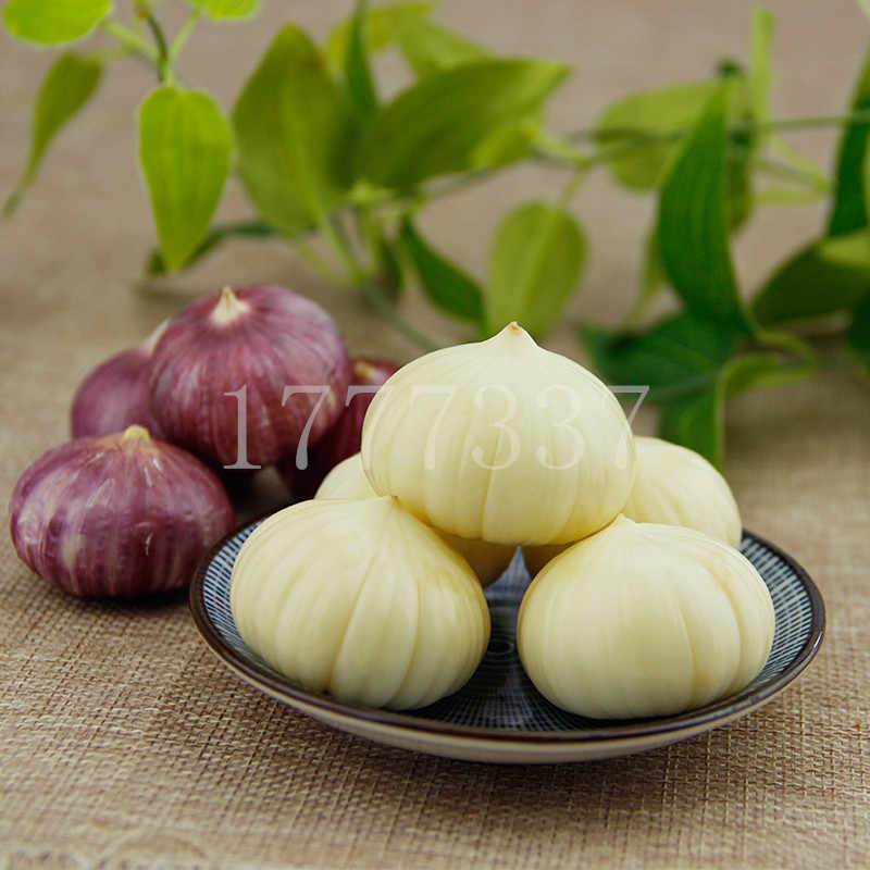 100Pcs/Bag garlic bonsai plant Chinese specialty purple skin single head garlic healthy delicious vegetable kitchen condiment