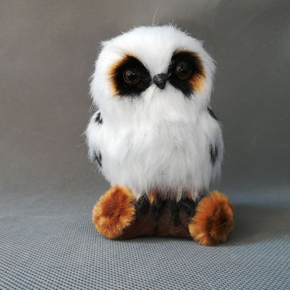 Buy Real Owl And Get Free Shipping On Aliexpress Com