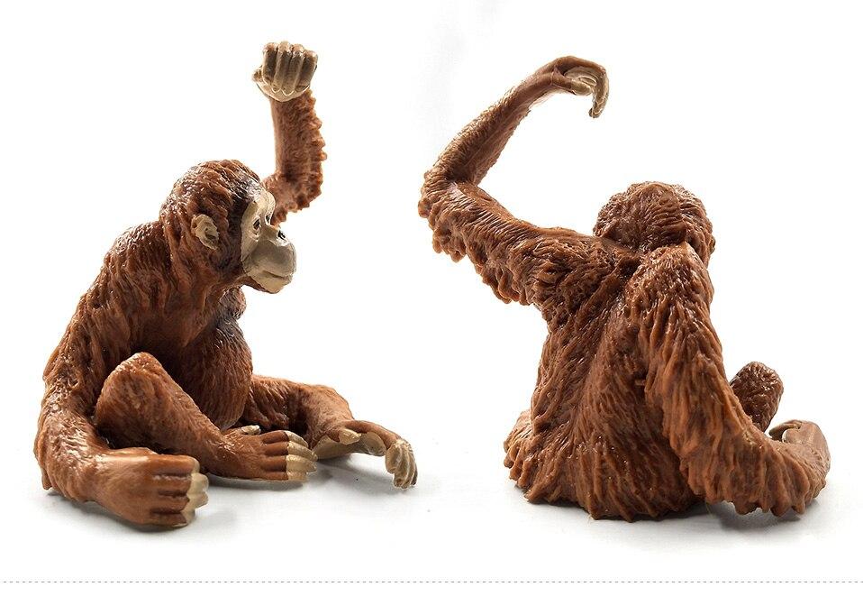 详情页-3款-红毛猩猩背崽-长臂猩猩-树猿_05