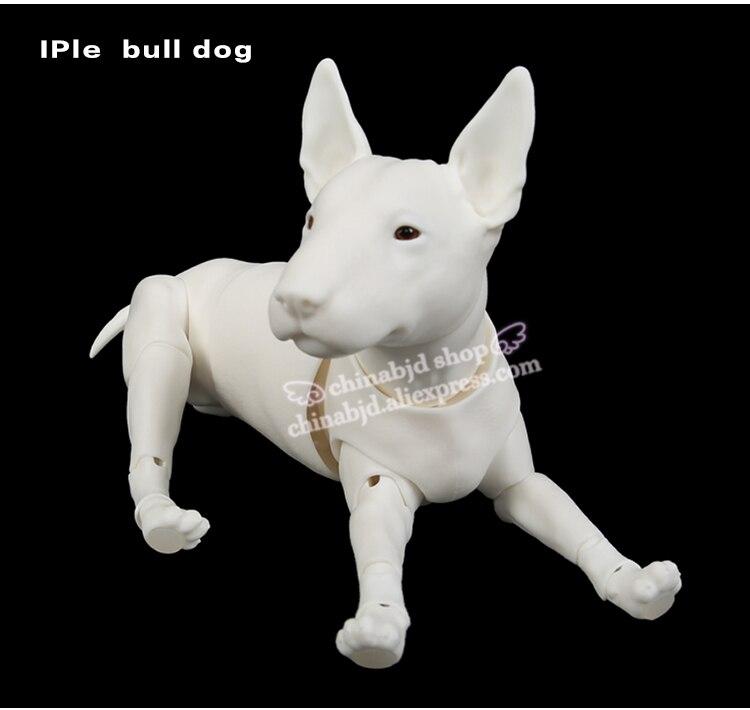Iplehouse IP Bull Dog Pet 1 6 BJD Doll SD Joint Doll Oueneifs Educational Toys
