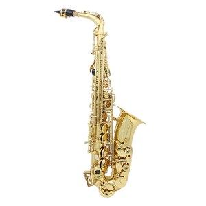 Image 3 - Saxofón Alto de latón Eb saxofón lacado oro con funda de transporte guantes de tela de limpieza cepillo correa para saxofón cepillo para boquilla silenciosa