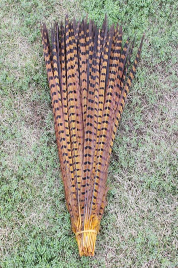 Ev ve Bahçe'ten Tüy'de Toptan 100 adet/grup doğal sarı Boyalı 40 45 cm/16 18 ''bakır tavuk tüy sülün Kuyruk tüyleri'da  Grup 1