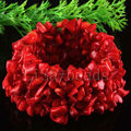 """Free Shipping Fashion Jewelry Stretch Weave Natural Red Sea Coral Bracelet 7"""" 1Pcs H047"""