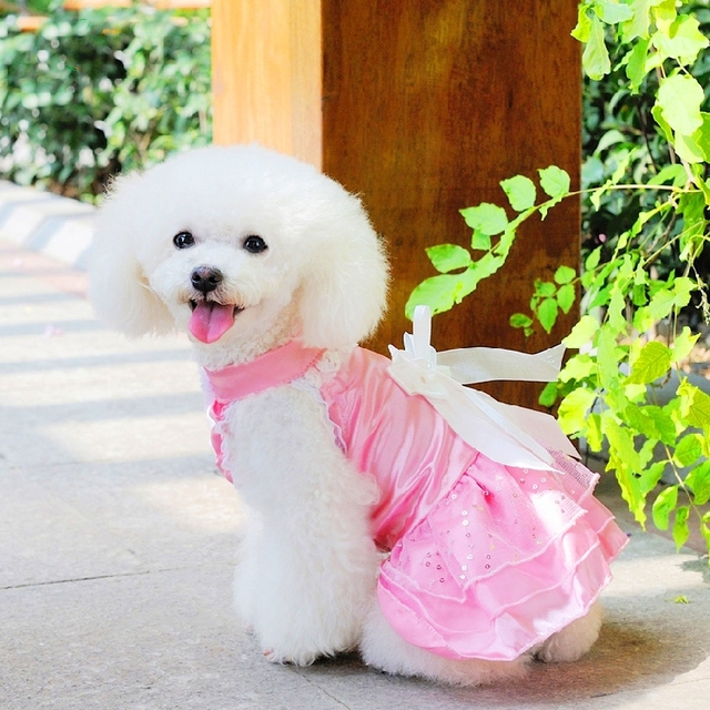 NEW Pink white pet clothes wedding dress for dogs tuxedo skirt with ...