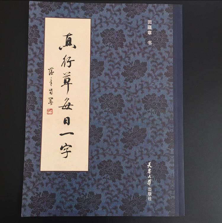 True Cursive Word Of The Day Tian Yunzhang Brush Calligraphy Copybook Exercises Small Cursive Script 28*21cm