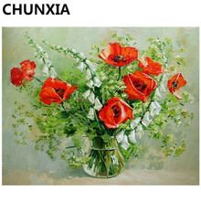 CHUNXIA Painting By Numbers DIY Framed Oil Paint Pictures Wall Art Home Decor Unique Gift E771(China)