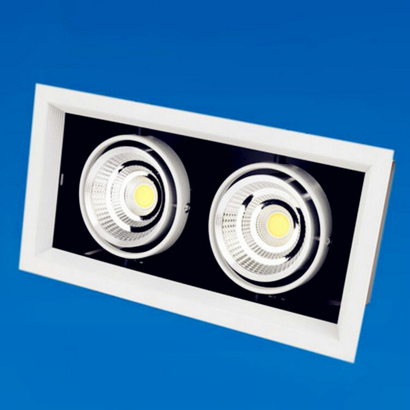 Free shipping Hot sale!!! 2*10W COB LED Downlight AC110/AC240V Cool/Warm White CE&ROHS 20W COB LED Spotlight Ceiling