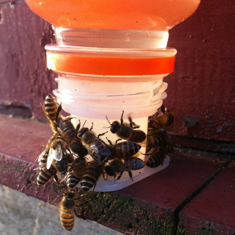 Bee Drinking Fountain Bee Queen Bee Water feeder Equipment Feeding Keeping Z8C7