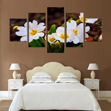 Modular Wall Art 5 Panel White Pictures Flowers HD Printed Modern Canvas Painting