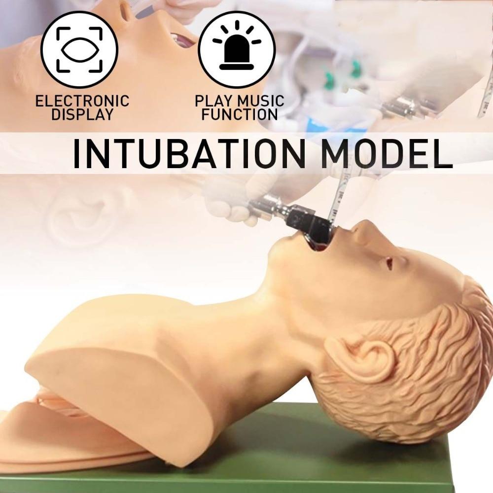 220 V modèle d'enseignement de mannequin d'intubation modèle de gestion des voies respiratoires en PVC