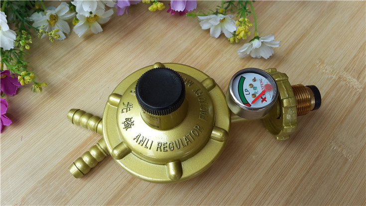 21mm Male Thread Single Gauge Double Mouth LP Gas Pressure Regulator antique brass wall mounted hair dryer holder bathroom hair blower rack