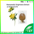 2016 100% Natural de Alta Calidad Extracto de Hamamelis Virginiana/Chino Extracto de hamamelis 600 g/lote