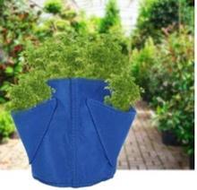BS-11 цвета Фанг цвета черный утолщение горшок из ткани горшок для растений контейнер для проращивания растут сумки для инструментов садовые горшки товары для огорода