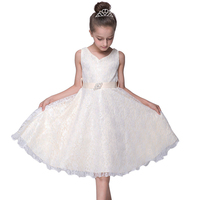 BAOHULU Girls Princess Dresses Wedding Party Dress Birthday Clothing Vestidos for Girl Teenagers Costume Children Clothing 2018