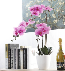 Image 3 - 7 Heads Phalaenopsis Orchid Flower Artificial Flower Wedding Decoration Floral Christmas Party Home Decor