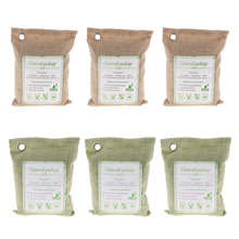 6 Pack 200g Bamboo Charcoal Air Purifying Bag Car Freshener Home Closet Purifier Green + Beige