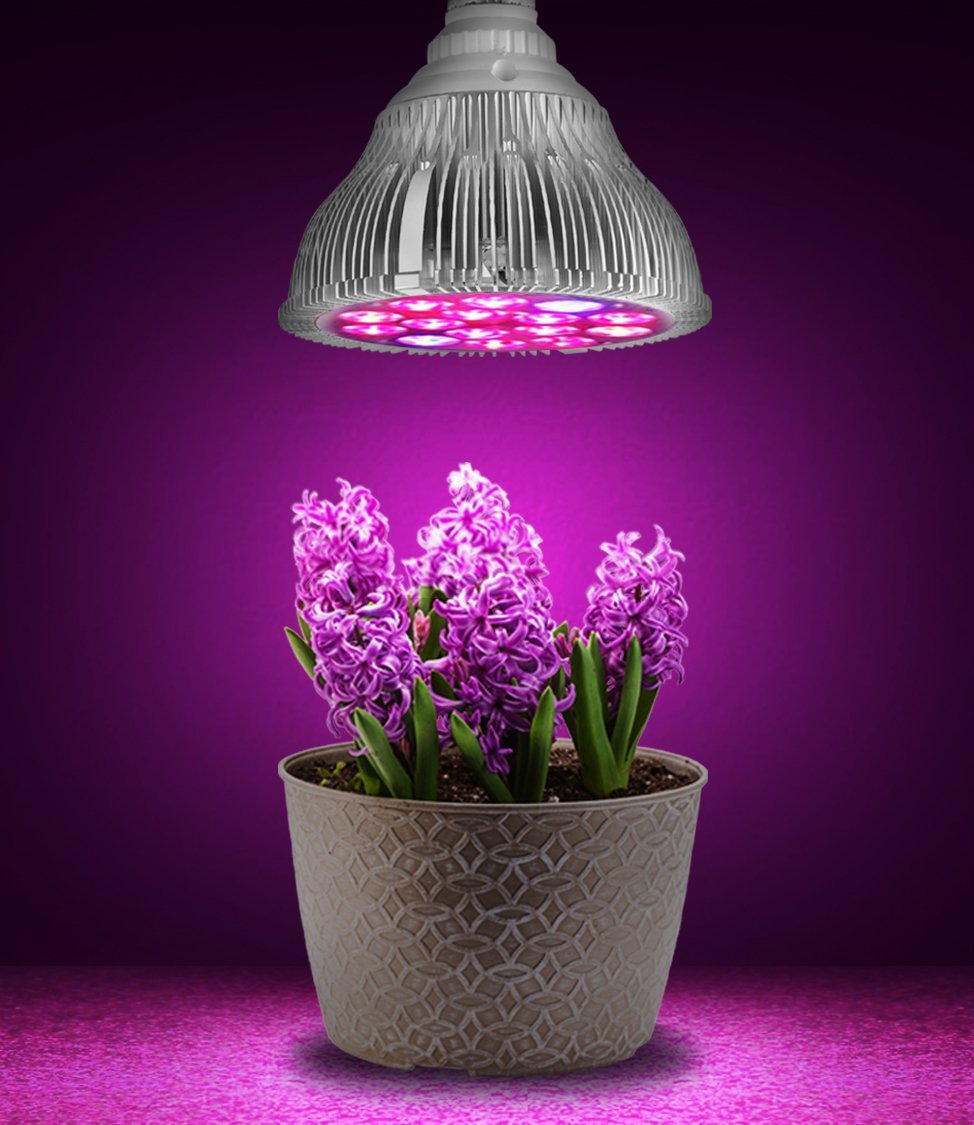 light smd full degree lamp product system plant indoor lamps kyson lights hydroponics grow spectrum led bonsai for aquatic garden haichen bandfor bulb flower greenhouse growing