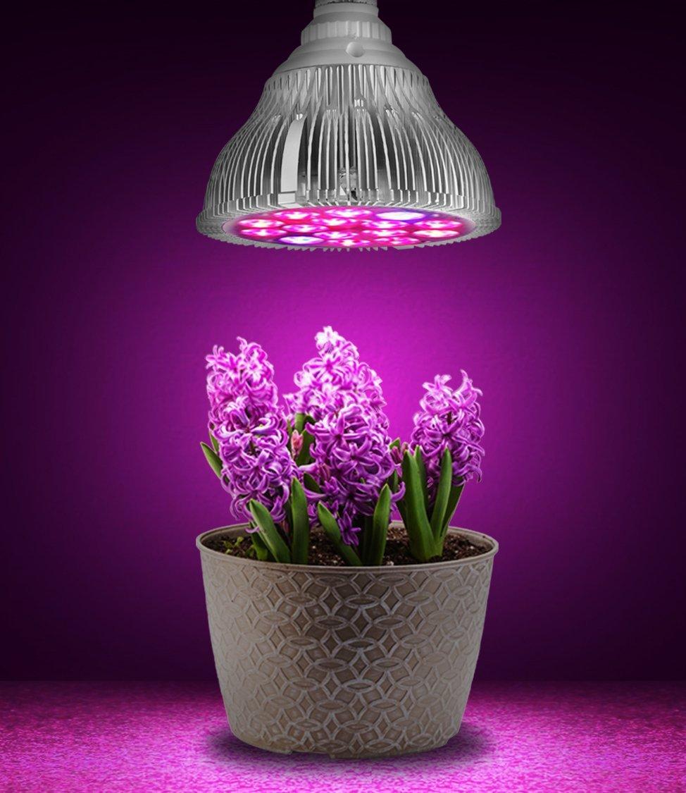 https://ae01.alicdn.com/kf/HTB1QdDKIFXXXXXeXXXXq6xXFXXXq/LED-Licht-Groeien-Par38-10-Rood-2-Blauw-Indoor-Plant-bloemen-Kruid-Verlichting-voor-Groeiende-Hydrocultuur.jpg