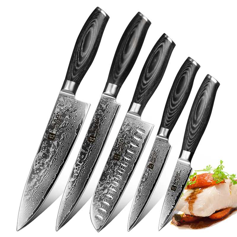 XINZUO 5 PCS Kitchen Knives Set 67 Layers VG 10 Japan Damascus Steel Chef Cleaver Santoku Utility Paring Knife Pakkawood Handle