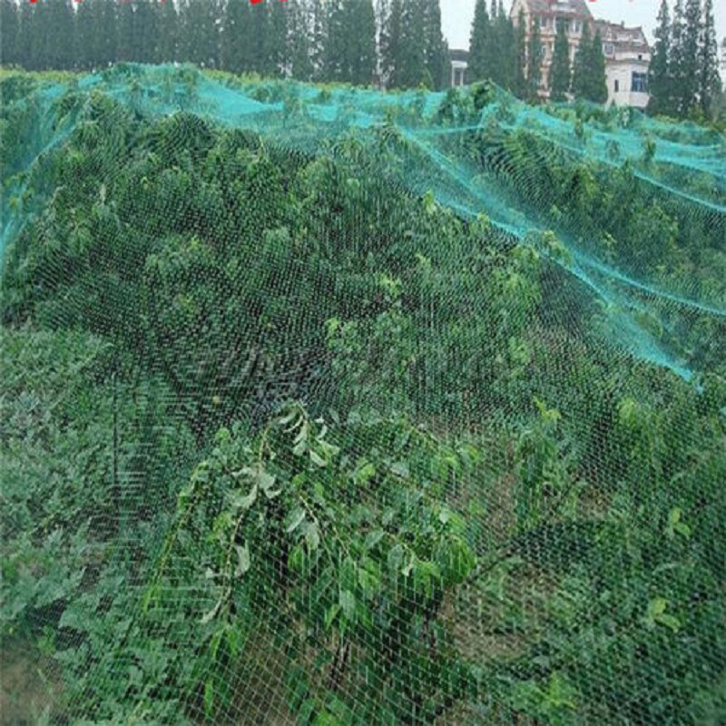 4mx10m anti bird crop net netting garden plants ponds for Garden pool netting