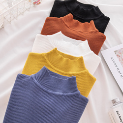 New Turtleneck Knitted Sweater Female Casual Pullover Women Autumn Winter Tops Korean Sweaters Fashion 2018 Women Sweater Jumper 1