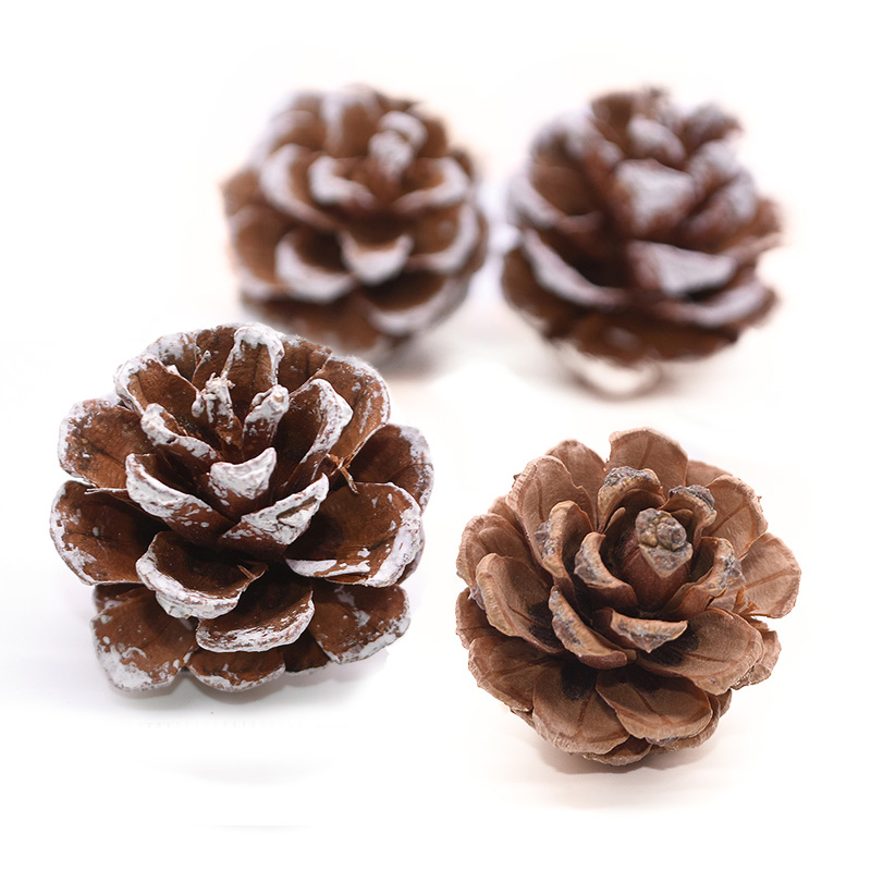10pcs/lot Christmas Decoration Pine Cones Bauble Xmas New Year Holiday Party Decoration Ornament For Home Supplies