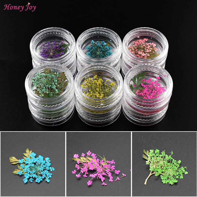 12 Colors 3D Real Dried Dry Flower Leaves Nail Art Decoration UV Gel Nails Stickers Nails Manicure Tips Decals fwc hot diy designs nail art beauty flower water stickers nails decoration decals tools