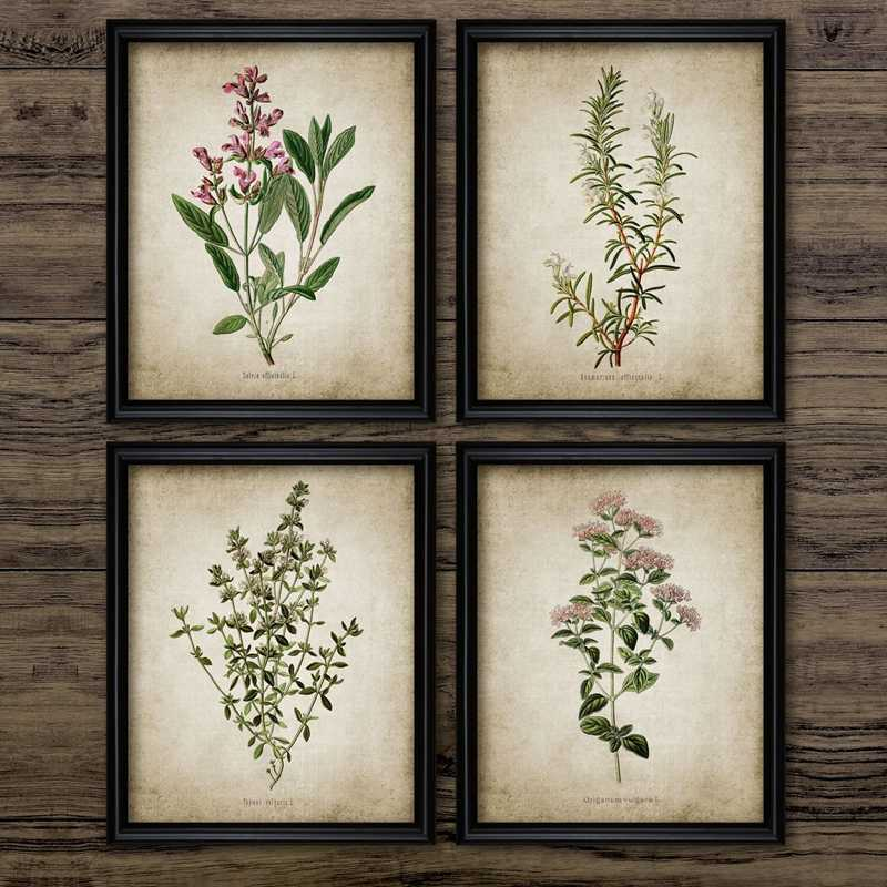 Vintage Herb Art Canvas Poster And Prints , Oregano Rosemary Sage Thyme Canvas Painting Retro Wall Pictures Home Art Wall Decor