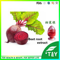 Factory direct supply 100% Nature Beet Root Extract Betaine Powder 500g/lot