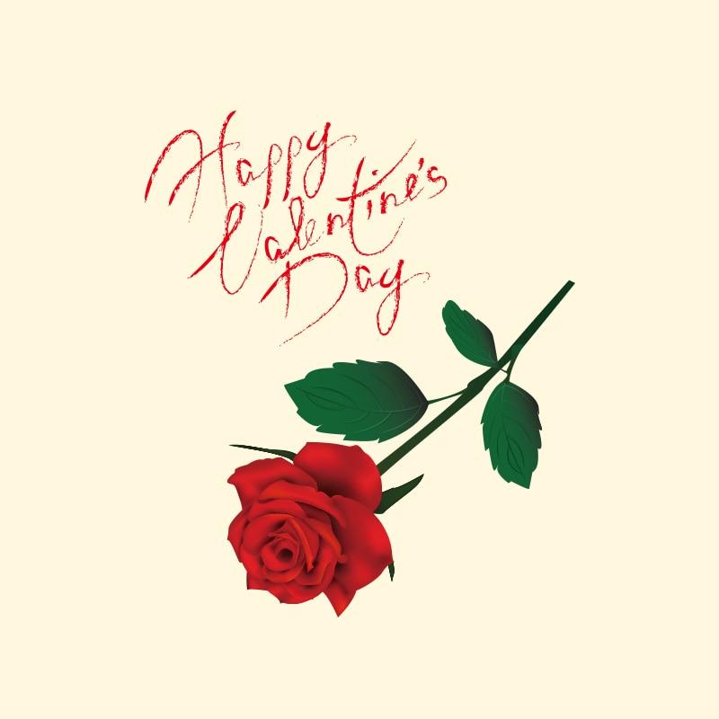 Doreenbeads 17x20 см Роза патч футболка Пресс Стикеры моющиеся железа на переводы Нашивки для любителей футболка подарок на день Святого Валентина