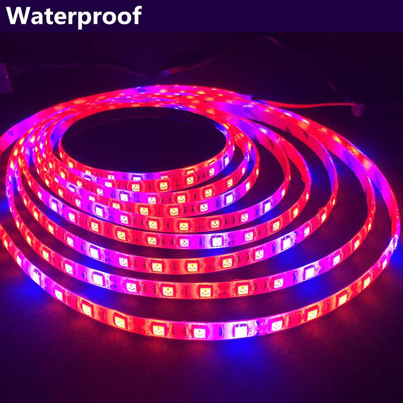 LED Plant Light DC12V LED Strip 5050 LED Strip Waterproof Outdoor Indoor Hydroponics LED Grow Lights Lamp for Seedings RGB LED