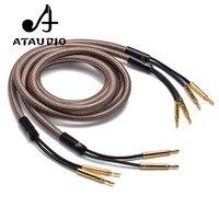 ATAUDIO Hifi кабель колонки Accuphase OCC Чистая медь аудио динамик провода с Позолоченный разъем типа «банан»