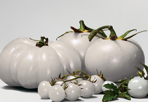 3000pcs a lot  Small Middle Large Super White Tomato Seeds  with 30pcs japanese pine tree seed as gift