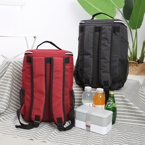 Image 2 - SANNE Bolsa de enfriamiento impermeable gruesa, bolsa de hielo con aislamiento fresco, bolsa aislante térmica, estilo mochila, 20L